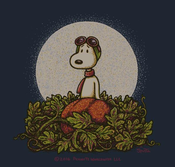 Snoopy mini print